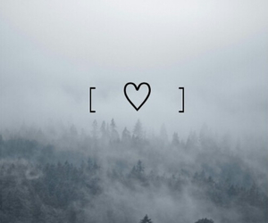 forest, heart, and indie image