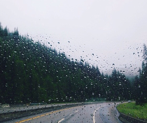 rain, grunge, and hipster image