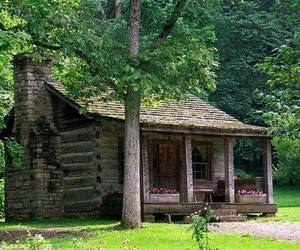 cabin, cottage, and nature image