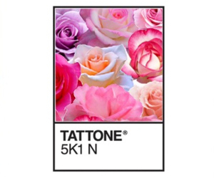flowers and tattone image