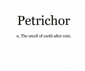 rain, smell, and earth image