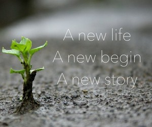 quote, story, and begin image