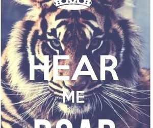 tiger, keep calm, and roar image