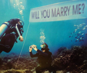 aww, marry me, and water image