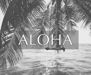 Aloha, beach, and paradise image
