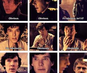 sherlock and obviously image