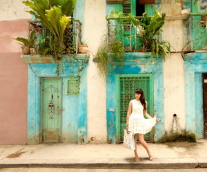 cuba and the cherry blossom girl image