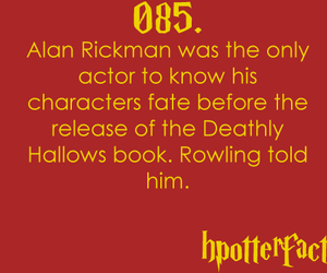 harry potter, alan rickman, and fact image