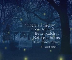 firefly and ed sheeran image
