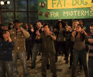 community, dance, and fat dog image