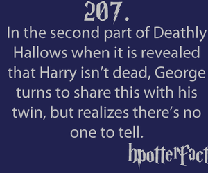 harry potter, sad, and deathly hallows image
