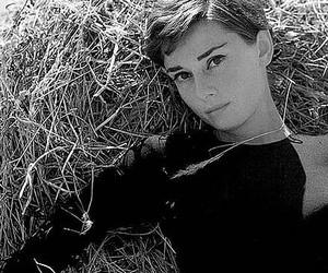 audrey hepburn, actress, and retro image