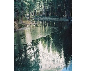 fantastic, forest, and reflection image
