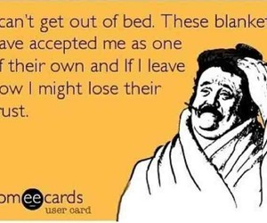 funny, bed, and blanket image