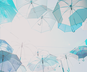 blue, umbrella, and anime image