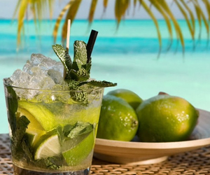 beach, sea, and cocktail image