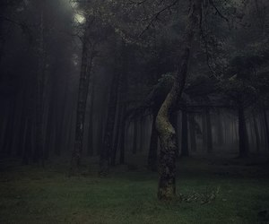 Darkness, fear, and loneliness image