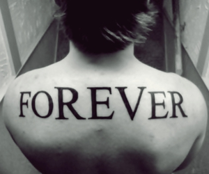 forever, the rev, and photo image