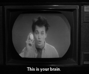 black and white, photography, and brain image