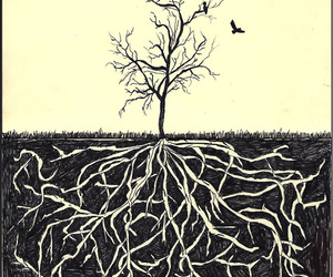 birds, tree, and drawing image