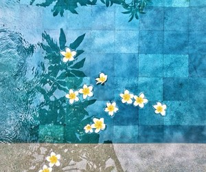 flowers, summer, and pool image