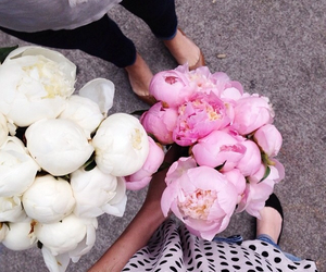 fashion, flowers, and peonies image