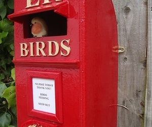 red and birdhouse image