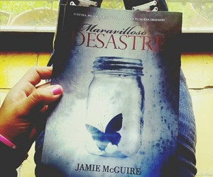 beautiful disaster, book, and books image