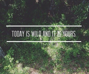 wild, today, and quotes image