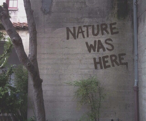 graffiti, nature, and tumblr image