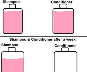 shampoo, conditioner, and true image
