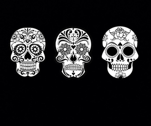 skull and black and white image