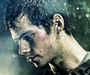 dylan o' brien, Hot, and the maze runner image