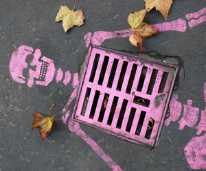 ;), ground, and pink image