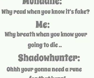 shadowhunter, the mortal instruments, and book image