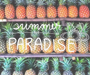 summer, paradise, and pineapple image