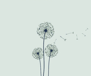 alone, dandelion, and drawing image