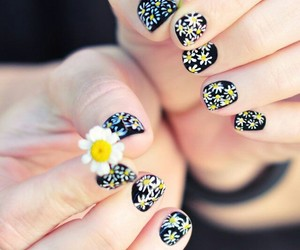 art, nail, and daisy image