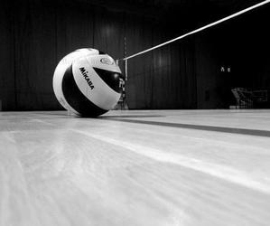 volleyball, ball, and sport image