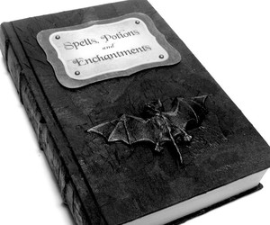 antique, black and white, and book image