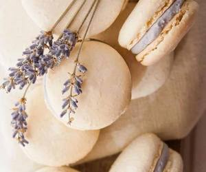 delicious, macarons, and pretty image
