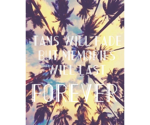 memories, palm trees, and pretty image