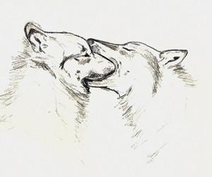 animals, art, and kiss image