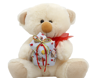 gift, teddybear, and happybirthday image