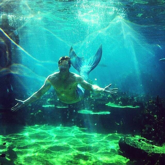 coral reef, mako mermaids, and chai romruen image