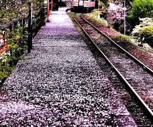 japan and train image