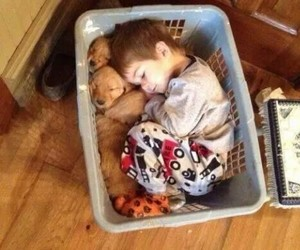 baby, dogs, and fun image