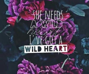 Lyrics, wildheart, and thevamps image