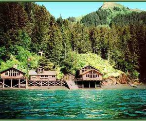 cabin, cottage, and trees image