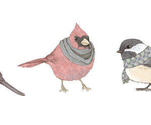 bird, drawing, and winter image